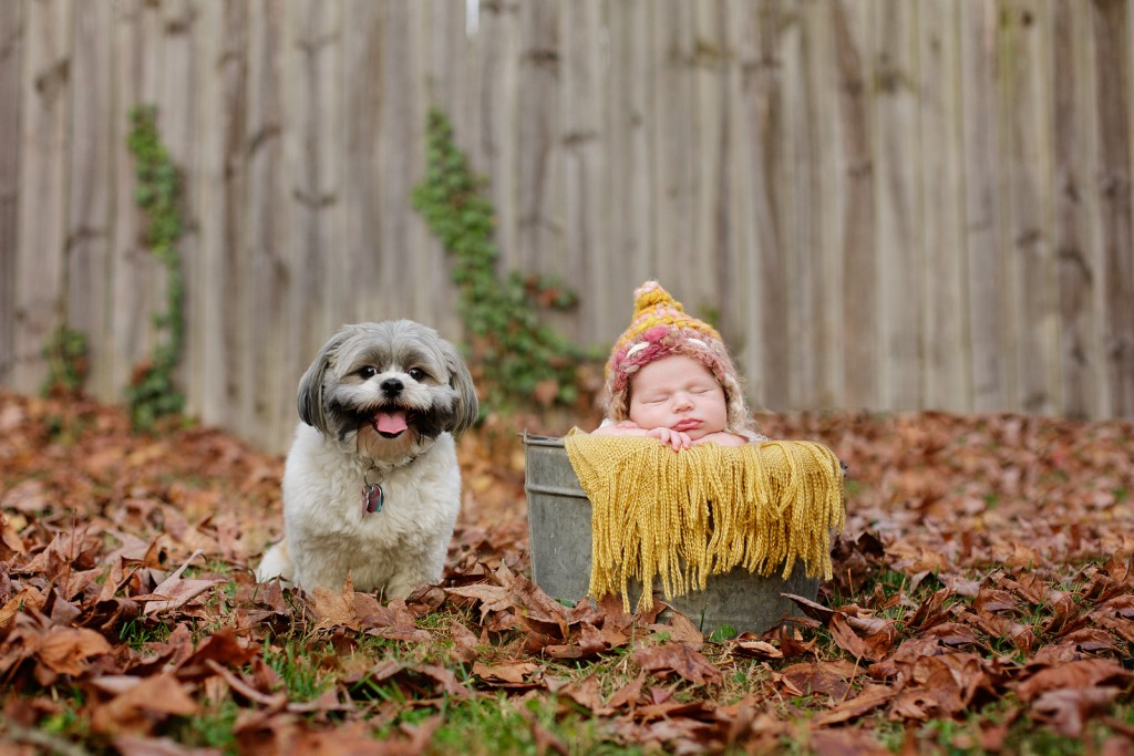 Cool Fall newborn pictures