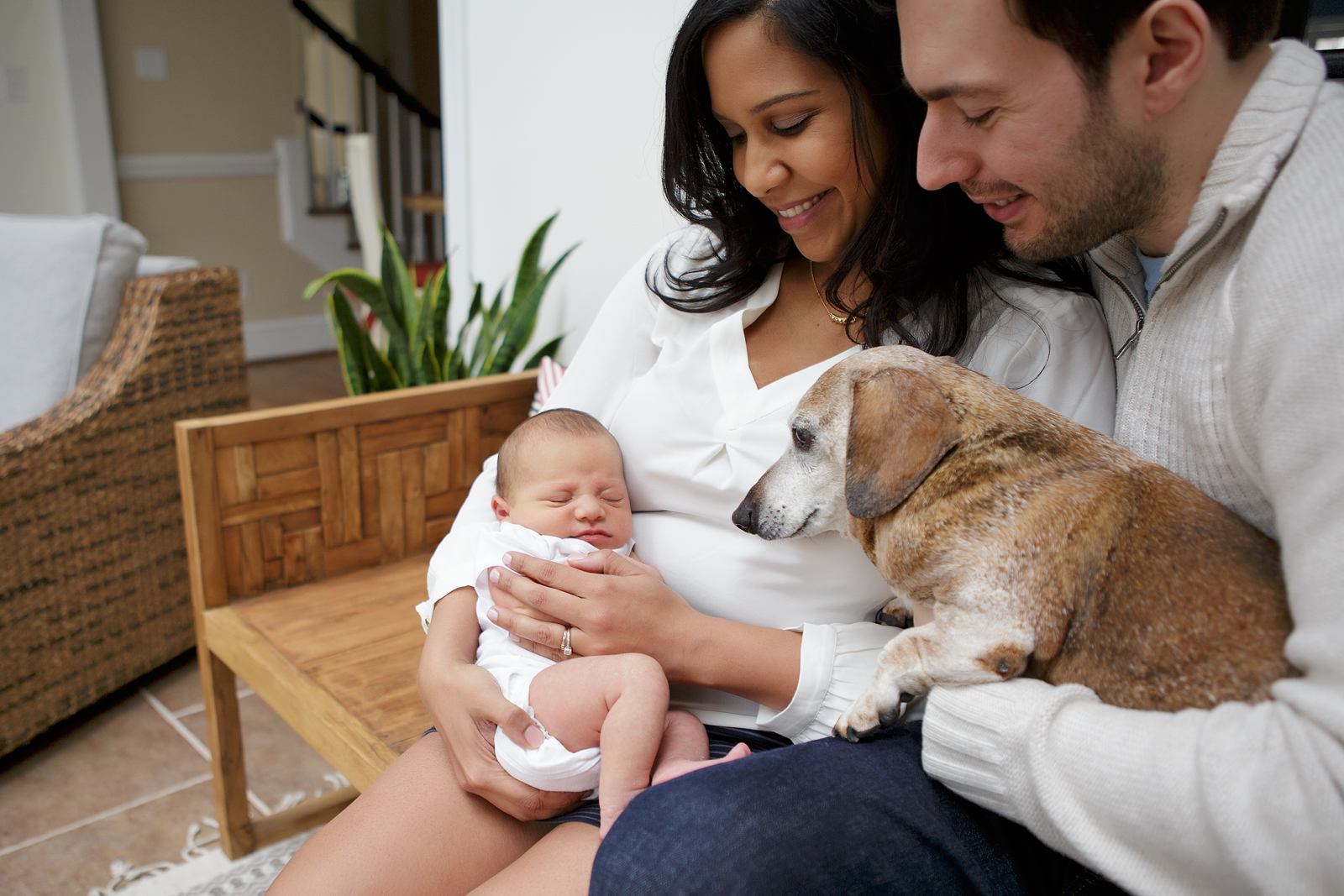 Dog Angry With Baby Maternity Silhouette Family Newborn Pictures